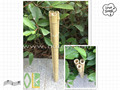 Decoration short tonkin bamboo cane/pole
