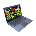 NB1411 Cheap Notebook Laptop Light 0.3M Pixels Hd Camera 4G+64G 14.1inch Win10 Tablet Notebook