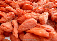2016 factory price Chinese Goji Berry