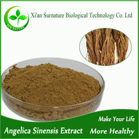 Organic Herb Angelica Sinensis Extract from angelica root