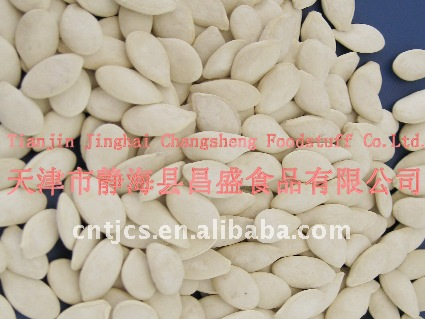 Roasted and salted pumpkin seeds 11cm 12cm 13cm