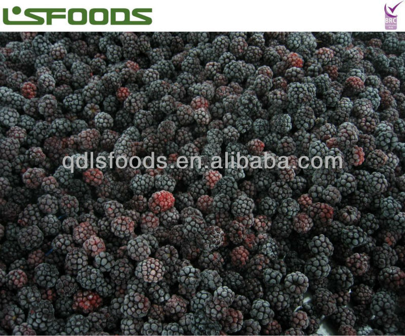 best price china frozen blackberry