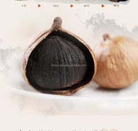 hot product chinese black garlic from Japanese technology