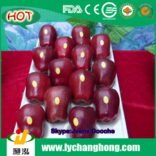 2015 New Crop China Red Huaniu Apple Red Delicious Apples Supplier