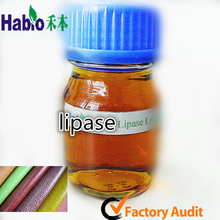 Industrial lipase enzyme