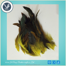 Wholesale cheap High quality Cock feathers for decoration