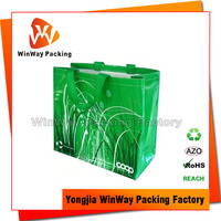 Hot Sell Custom Logo Printed Recycled Plastic Bag