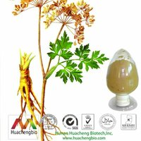 ISO&GMP 1% Ligustilides Dong Quai Root Extract Powder