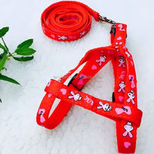 designer fashion dog collar and leashes
