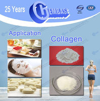 functional food Anti-aging Collagen / Halal certificate food/cosmetic grade