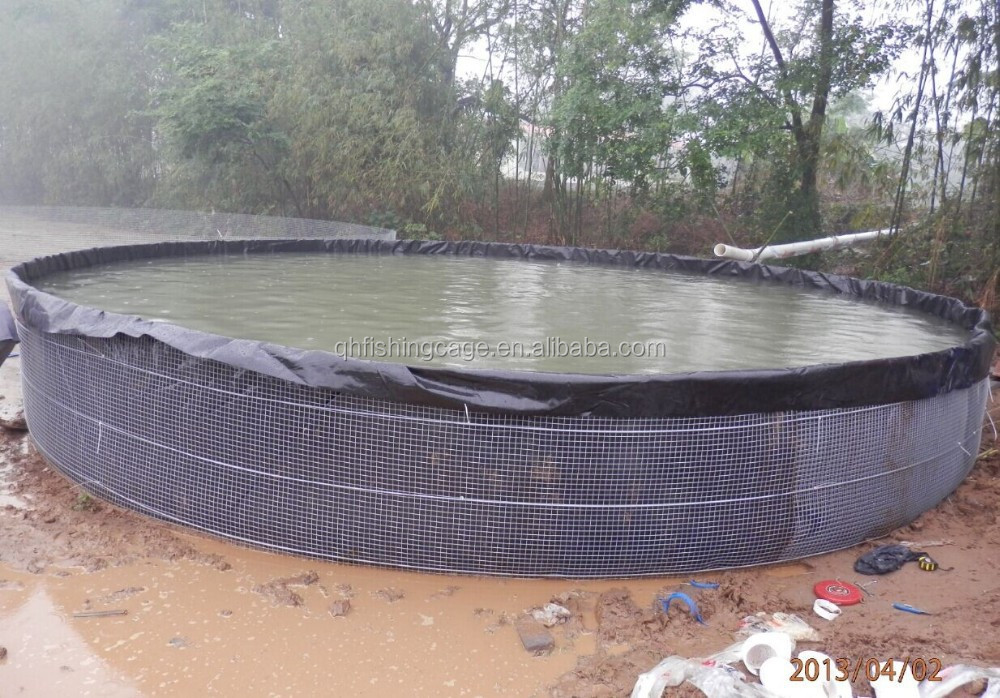 the most economical plastic water tanks for catfish farming