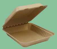 sugarcane pulp takeaway recycled paper/insulated hot food containers