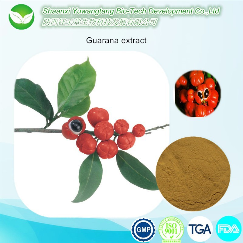 100% pure caffeine powder & guarana extract 10%~22%