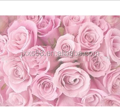 cosmetic grade rose essential oil plant extract