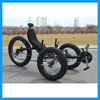 500W 48V Fat Tire 3-Wheels Electric Recumbent Bikes for Adults
