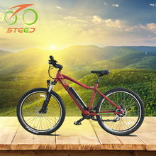 big wheel 250w cheap mountain electric chopper bicycle for adult sale