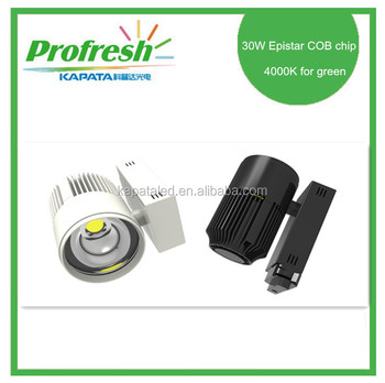 30W ,Epistar COB chip 4000K for fruits or vegetables in the supermarket