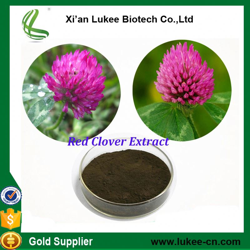 Red Clover Extract Trifolium Pratense L. extract Isoflavone 8-40% for prostate cancer, breast cancer , (CADY)