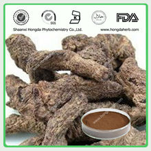 China Product Rehmannia Root Extract
