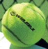 Popular A grade training competition tennis ball,cheap price tennis balls