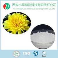 Top quality competitive price Synanthrin/inulin plant extract 90% from chicory