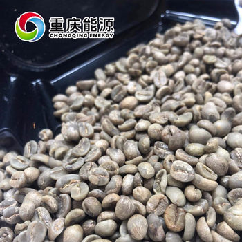 Best price Green coffee beans