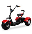1200W 3 wheel electric scooter citycoco motorcycle with CE(C10)