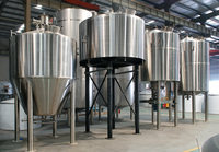 30hl Fermentation stainless steel Tank/ for large brewery equipment