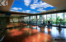 Self-patent CE approved gym house, fitness room LED sky ceiling panel light