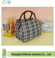 Portable cooler launch bag for frozen food