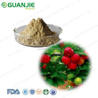 Best Selling vitamin c acerola cherry powder From GMP Factory