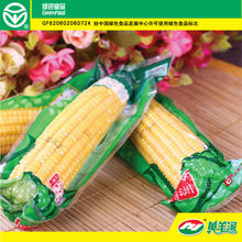 Yellow Corn/Maize