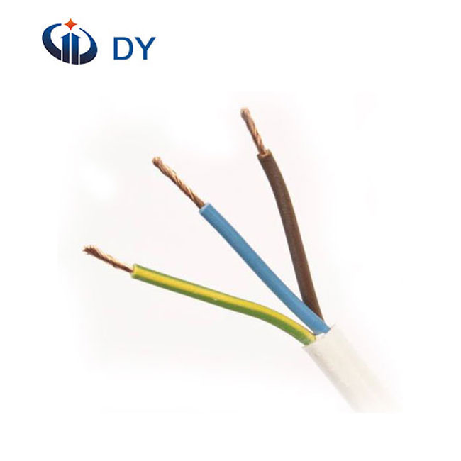 High quality RV stranded flexible electrical PVC insulated wire for foregin market made in China