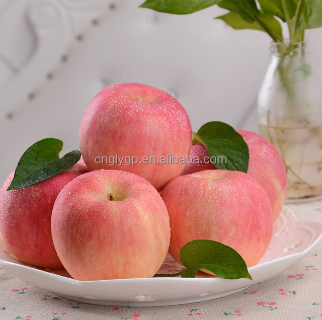 No pesticide residues Top grade fuji apple / pink lady apple / fresh apple