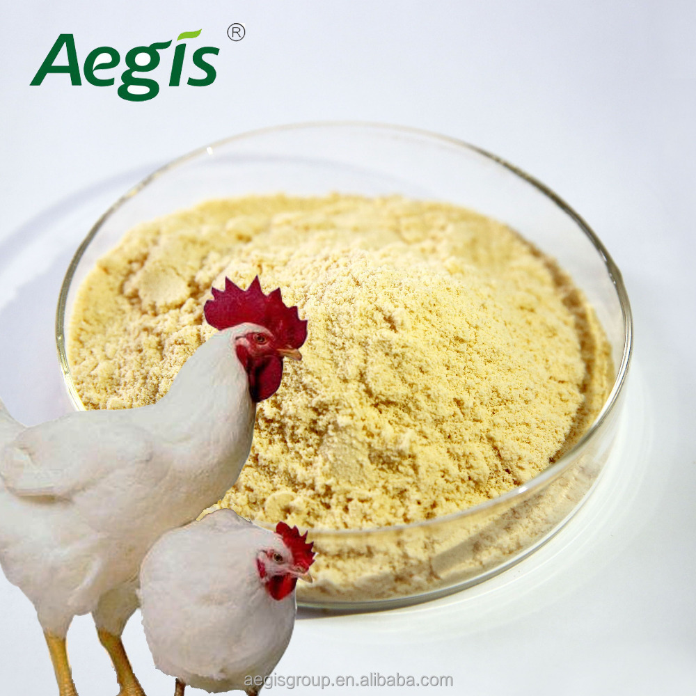 Improve chicken intestine health at new feed additive lysozyme,reduce feed conversion ratio