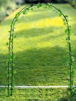 flower rose Arch