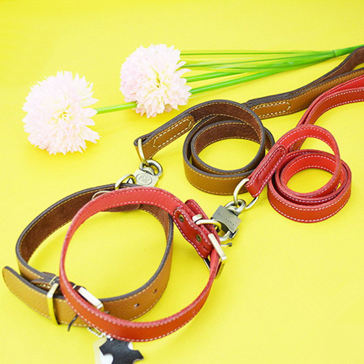 Best quality Crazy Selling electronic dogs leash