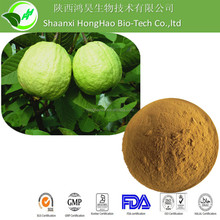 Best Price Psidium guajava Extract/Natural Plant Extrat Guava Leaf Extract