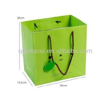 Green apple Colors gift Paper Bags