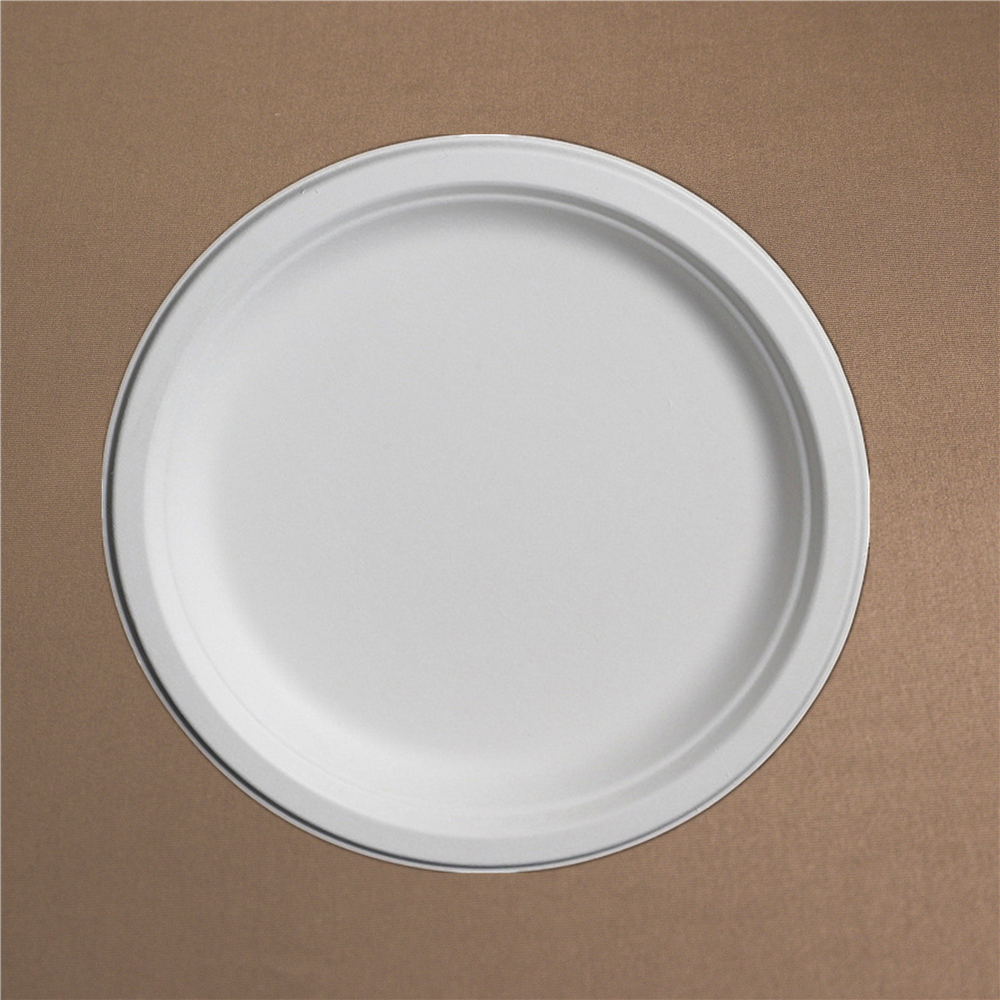 9 Inch Disposable Paper Plate Biodegradable Compostable Bagasse Plate