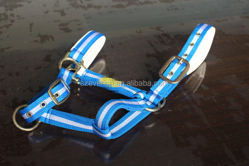 Tri-linear White and Blue Horse Halter
