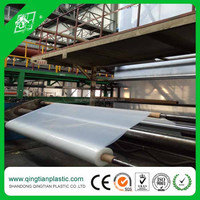 Functional Agricultural Greenhouse Film with UV protective