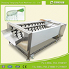 GL-380 Turnip Carrot Washing Machine Fruit Washer