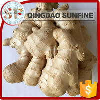 Dried organic ginger export prices