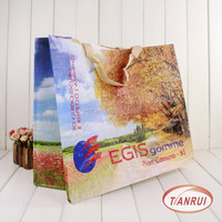 Custom promotional cheap price PP laminated non-woven fabric carry bag