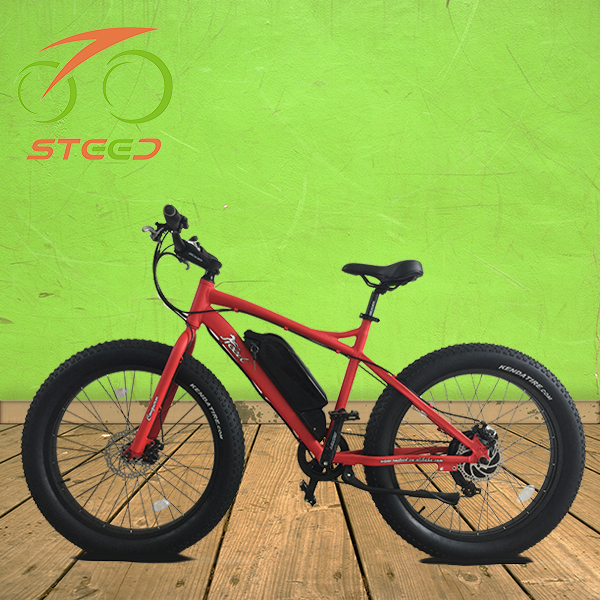 fast speed cruiserc bycicle electric bike car 35-40km/h