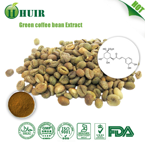 High purity Green Coffee Bean Extract/Svetol/Pure Green Coffee Bean P.E./50% Chlorogenic acid