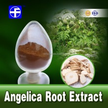 Angelica root extract / Dahurian Angelica Root P.E / herbal extract