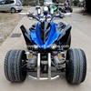 /product-detail/chinese-racing-atv-250cc-spy-eec-quad-atv-with-led-turning-lights-60454450391.html