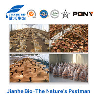 GMP Manufacture Supply 100% Natural Ganoderma Lucidum Extract triterpene 1-15%/Reishi Mushroom Extract Polysaccharides 10%-50%